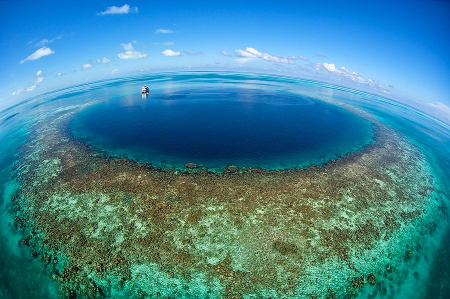 Blue Hole - Belize 13